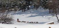 2021-04-08_sneeuwschoenwandelen-naar-het-santuari-montgarri-val-d-aran-catalonie-6.jpg